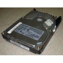Жесткий диск 18.4Gb Quantum Atlas 10K III U160 SCSI (Ивановское)